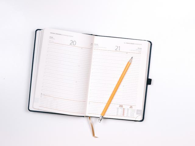 an open diary with a pencil
